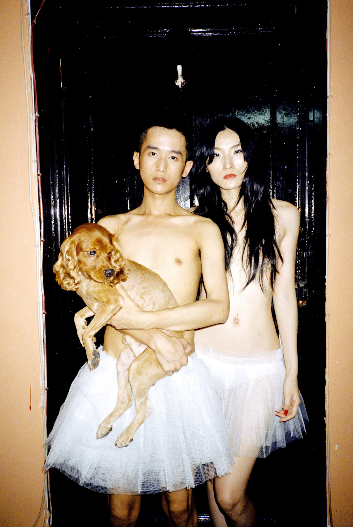 couple dog