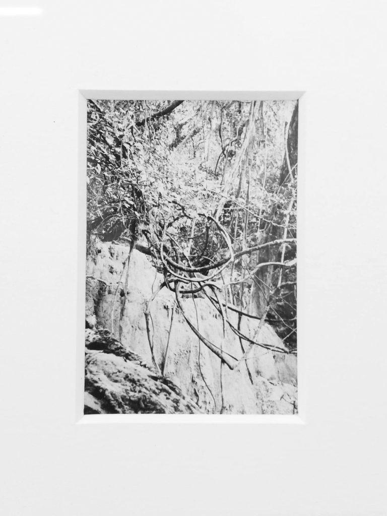 Untitled, 2019, 4x6 cm, framed, 33x39 cm, silver gelatin print, unique