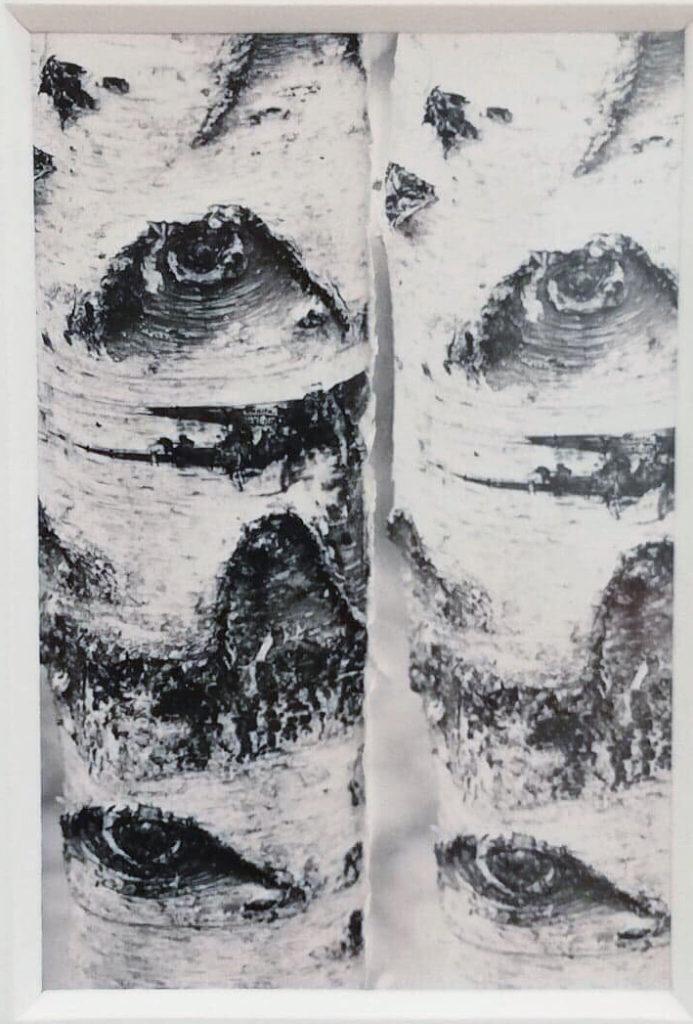 Silver Gelatin Print 6x4 cm, unique  Unique-print 6x4 cm - frame 33x39 cm