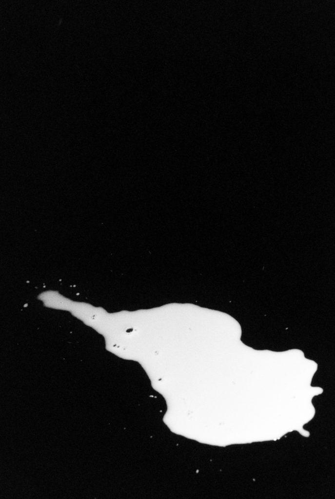 Milk and honey, 2019, 4 x 6 cm, framed 33 x 39 cm, hennemuhle baryte print, edition 3